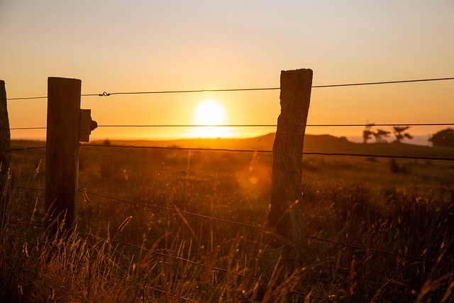 Texas ranch land